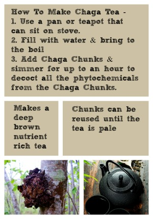 How To make Chaga Tea