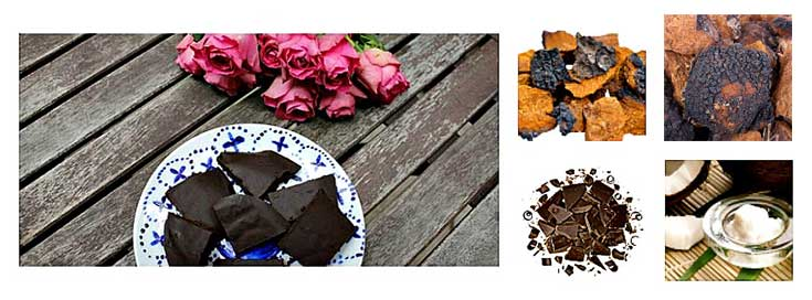 Chaga Fudge Collage