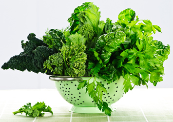 Image of fresh green lovely Kale in a colander