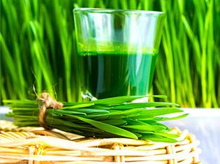 Indigo Herbs Premium Quality Superfoods Wholefoods Amp Herbs