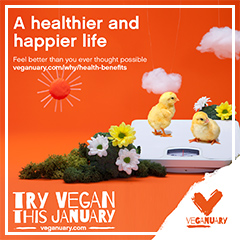 Try Vegan this January
