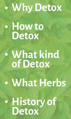 Click here to visit our January Detox Blog