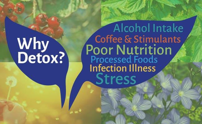 Why Detox?`