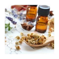 Childrens Health - Indigo Herbs newsletter