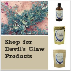 Shop for Devils Claw Products