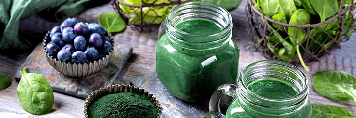 Blue-green algae recipe collection