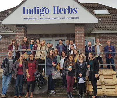 Indigo Herbs Team