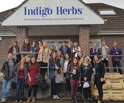 Indigo Herbs Team