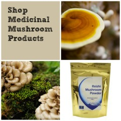 Shop Medicinal Mushroom Products