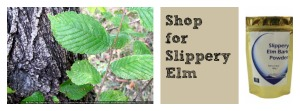 Shop Slippery Elm Products