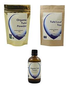 Tulsi (Holy Basil)
